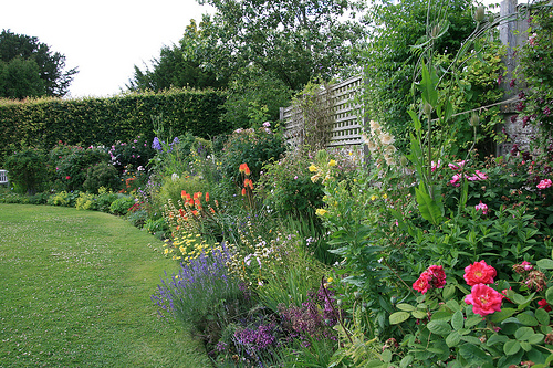 Home ideas cottage garden plans for Cottage garden design