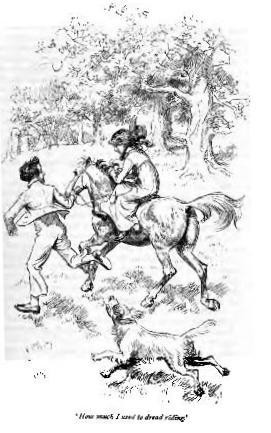 MP-Thomson-1897-horse2