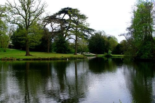 Part of the lake at Painshill Park, cTony Grant