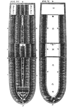 SlaveShipDiagram-1790-wp