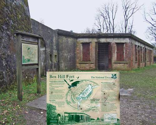 Box Hill Fort
