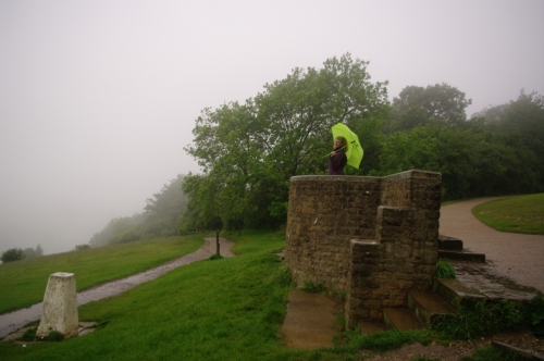 On the top of Box Hill