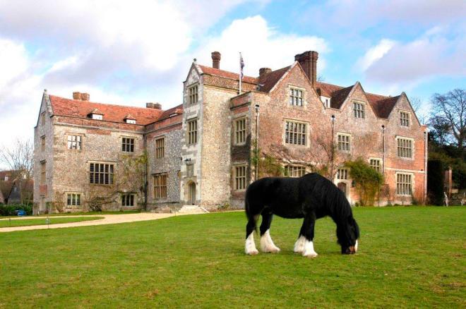 Chawton-House-Shire-Horse